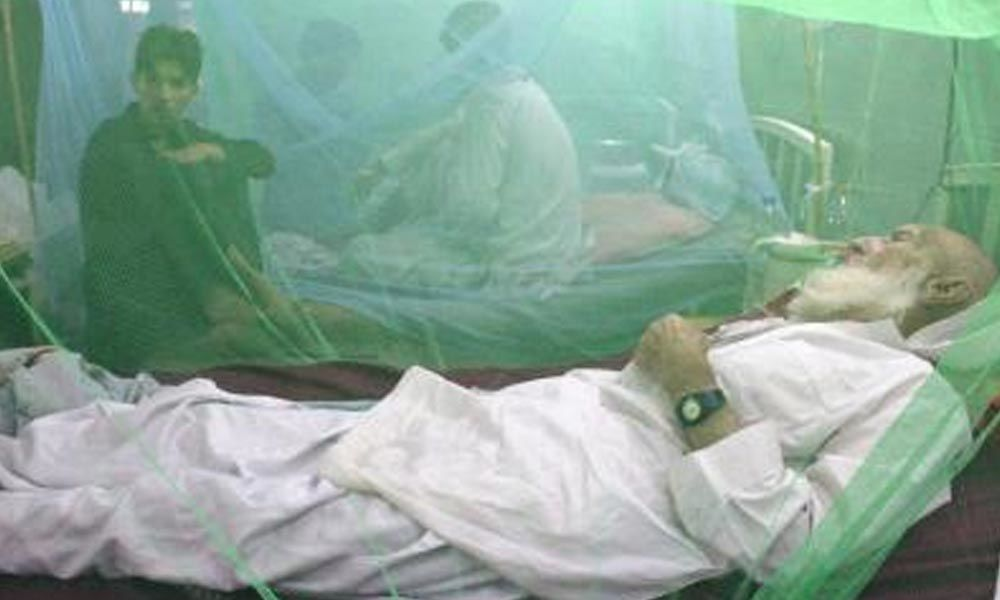 Pakistan dengue cases nearing 50,000