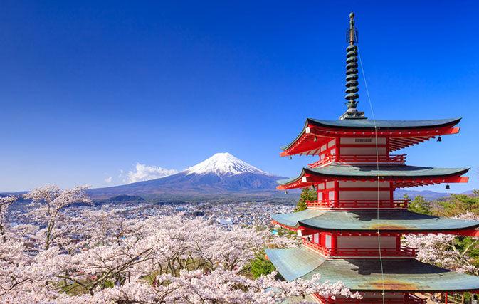 Coronavirus: Tokyo Postpones Olympics 2020 Volunteers Training