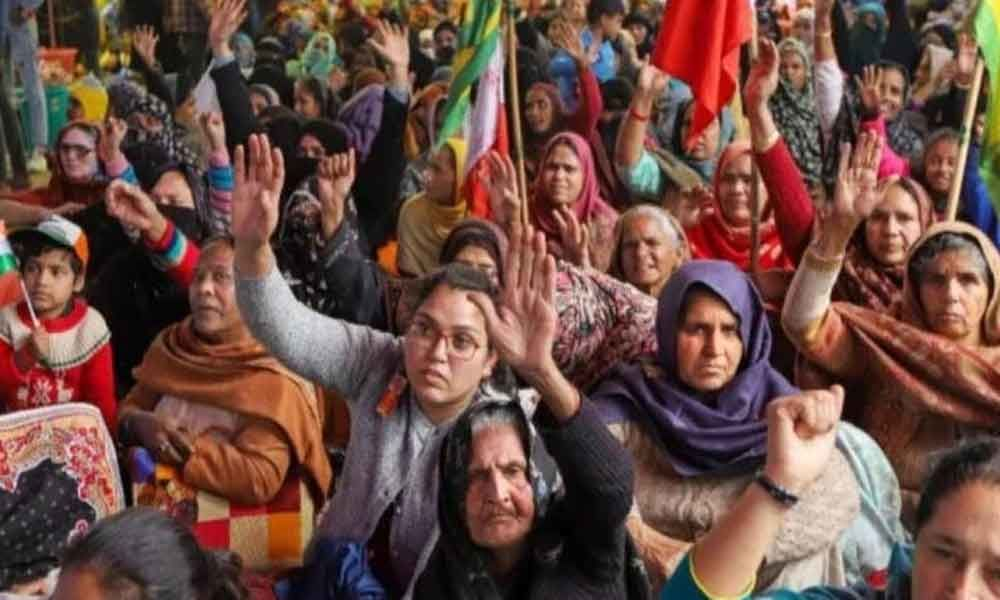 Shaheen Bagh: Supreme Court Hearing On Plea To Clear Protest Site Today