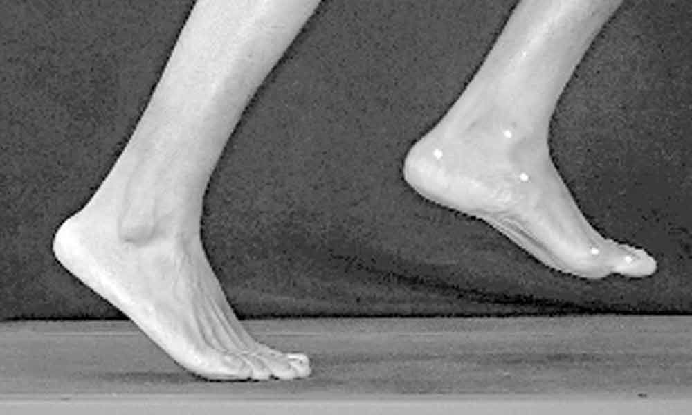 Overlooked part of foot key to how humans walk, run: Study