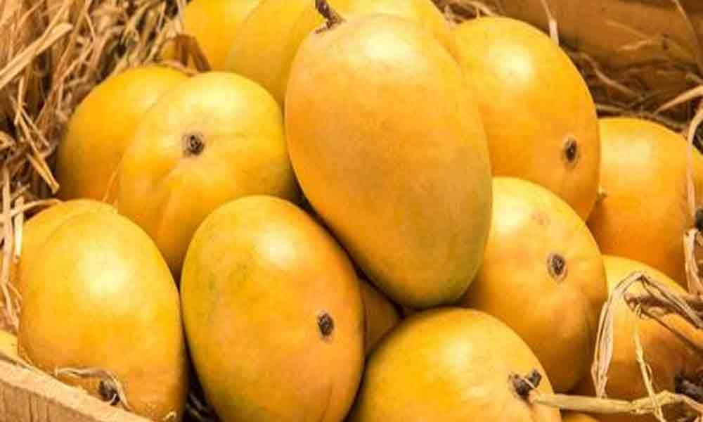 Postal services deliver mangoes at doorstep in Hyderabad