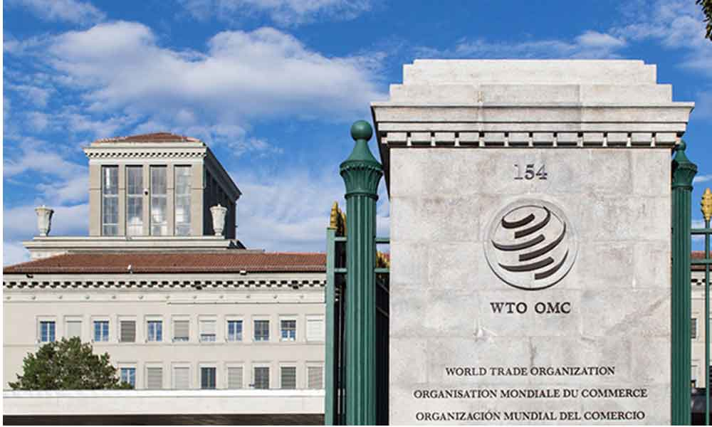 WTO and the politics of subsidies