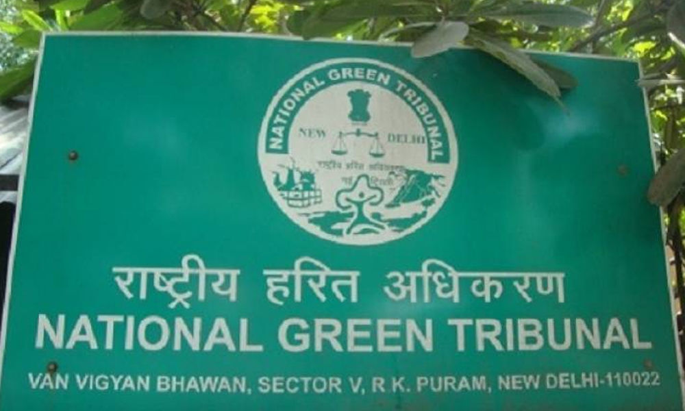 NGT directs UP govt to submit 5 cr
