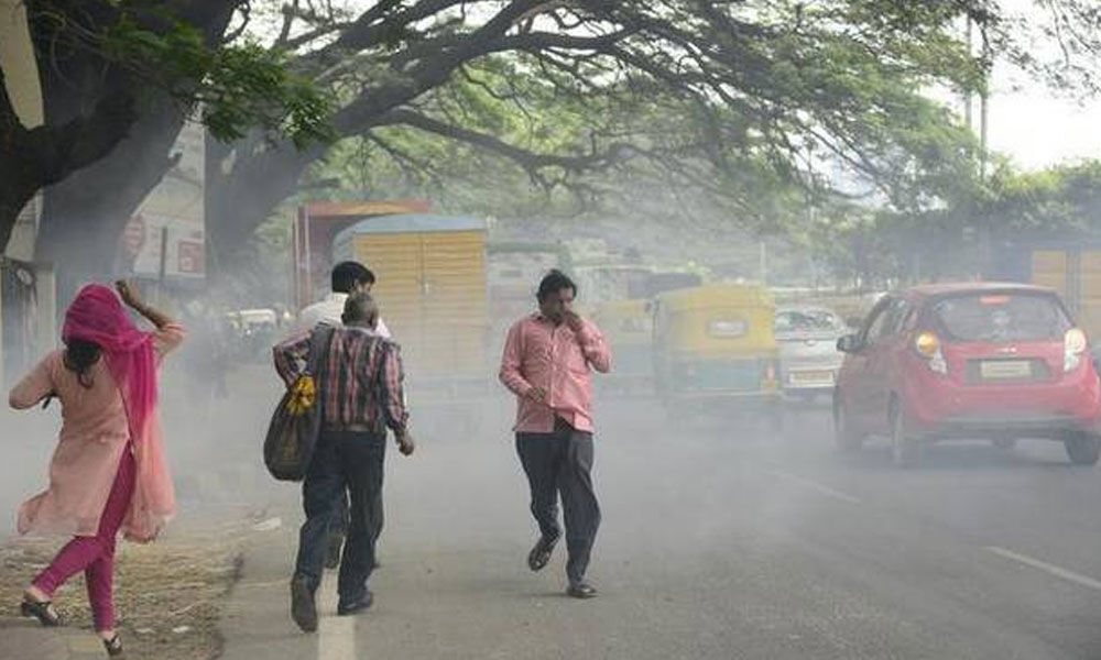 Leaf-litter causes increasing pollution levels in Bengaluru