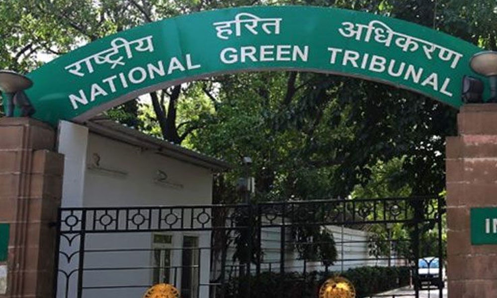 Update us on rainwater harvesting systems in KVs, NVs: NGT