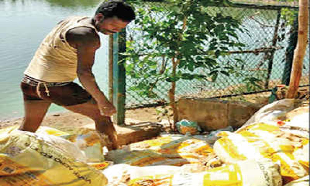 Food firm dumps food batter on the banks of Sheelavantha Lake