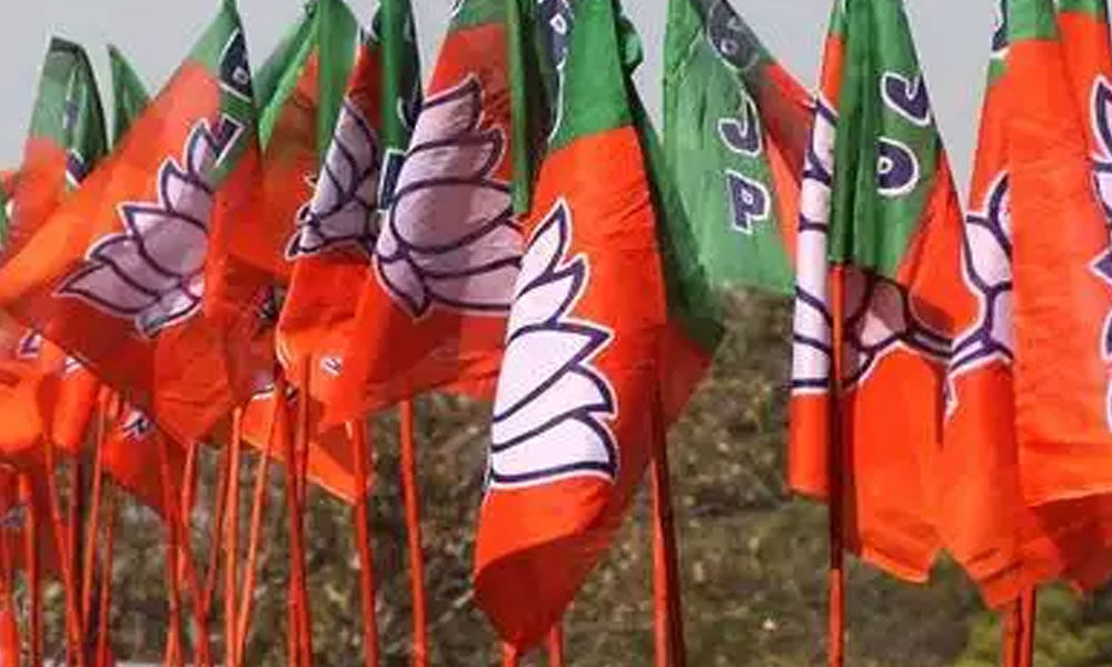 BJP announces names of 297 candidates for Lok Sabha polls in six lists