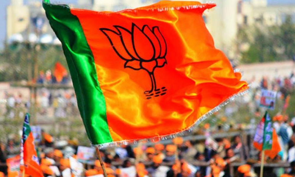 BJP announces names of 4 LS candidates, fields Gadtia against Patnaik in Bijepur