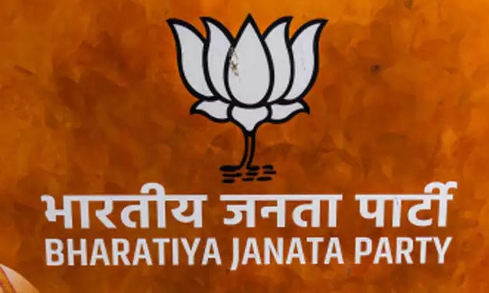 BJPs quest for success