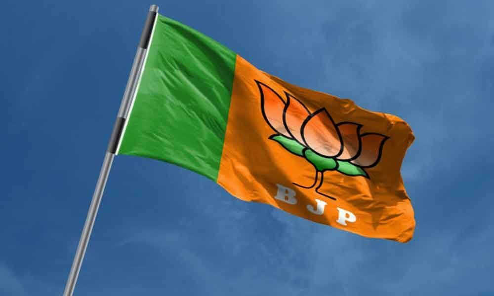 Women get a raw deal in BJP ticket distribution