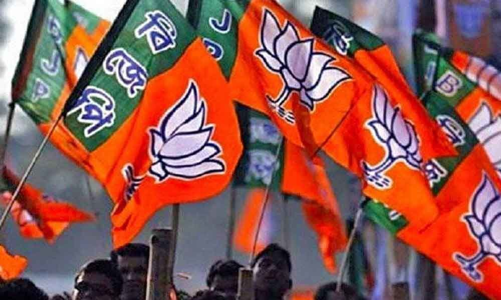 2019 Lok Sabha polls: BJP releases the 12th list of 11 candidates