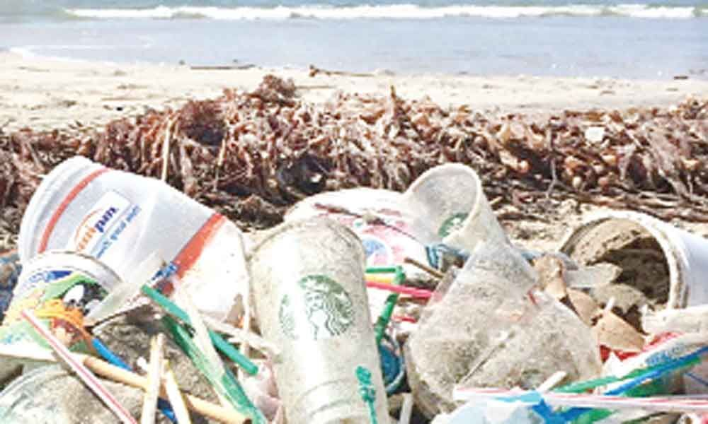 Industry calls for ban on use of plastic straws