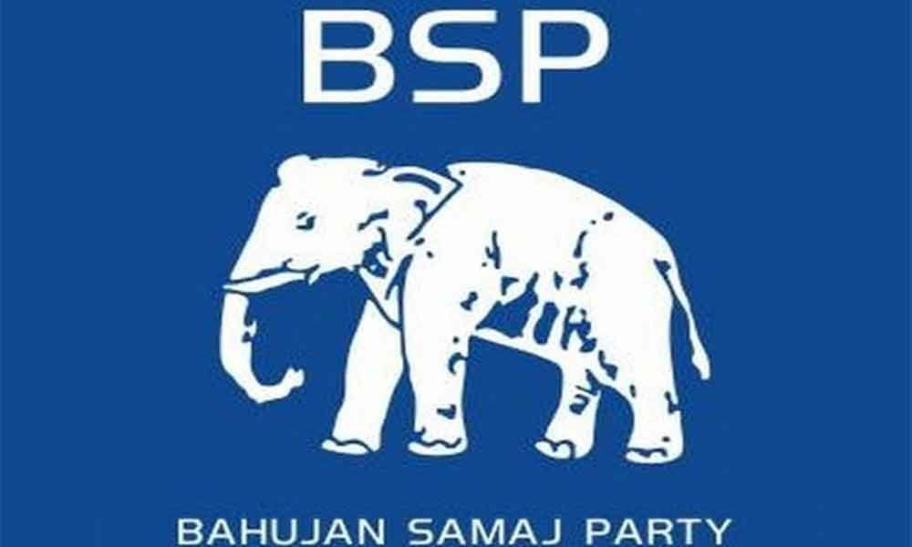 2 women candidates named as BSP announces 2nd list