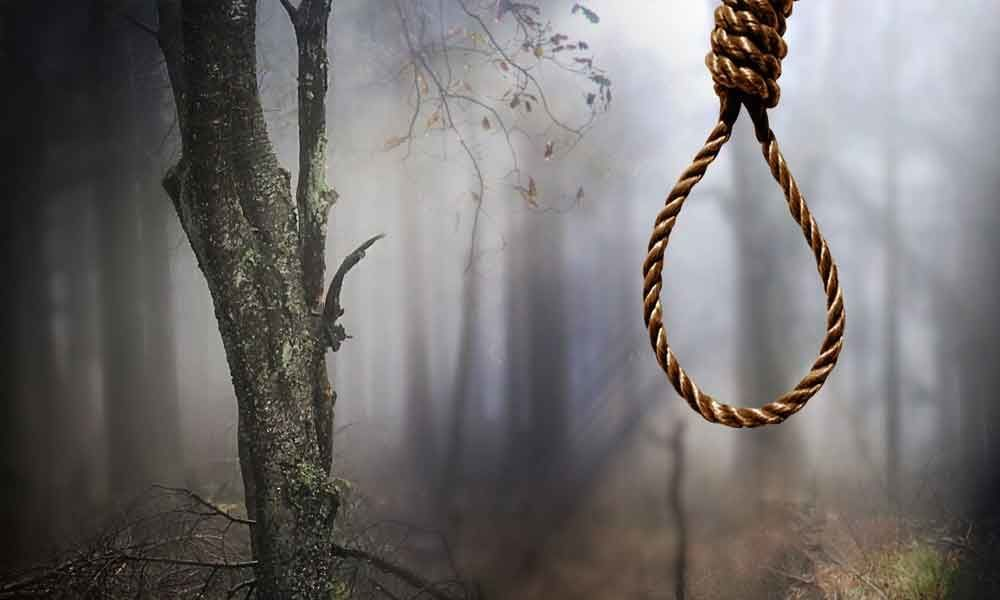 Bodies of 2 friends found hanging from tree in UP