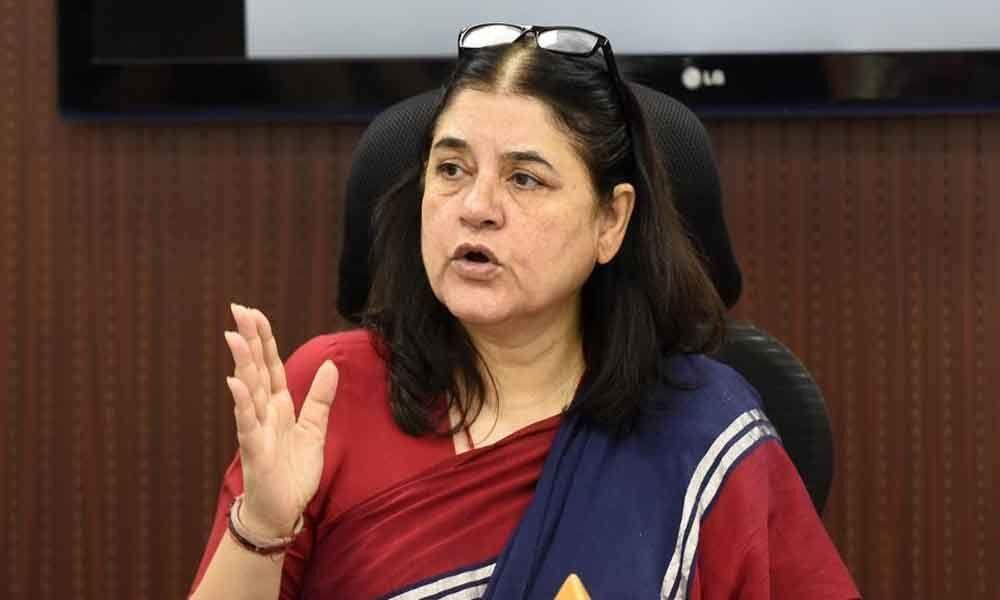 Mayawati sells BSP tickets for Rs 15-20 crore each: Maneka Gandhi