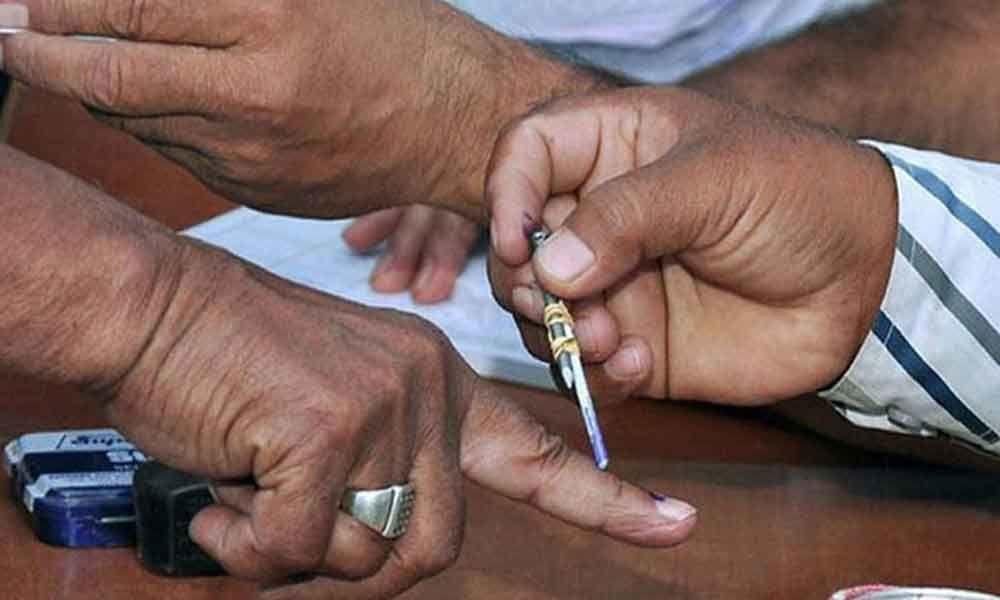 Gujarat Lok Sabha polls: 371 candidates in fray for 26 seats