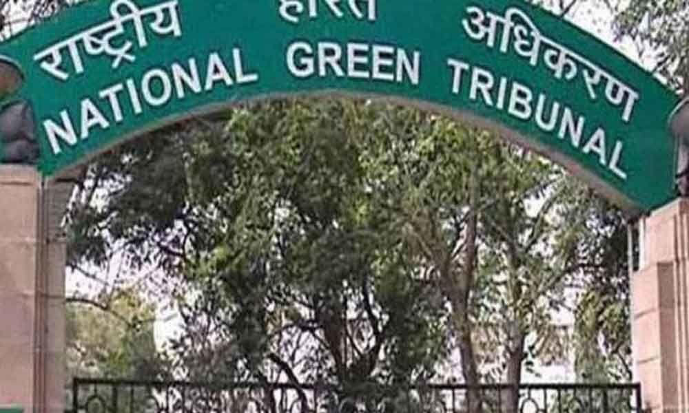 NGT directs SDMC to submit a report on illegal encroachments at Samalkha Extension