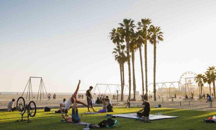 Explore Santa Monica like a local!