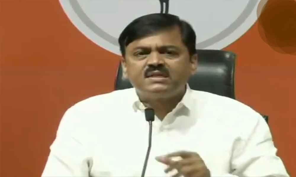 Watch: Man hurls shoes at BJP MP GVL Narasimha during press conference