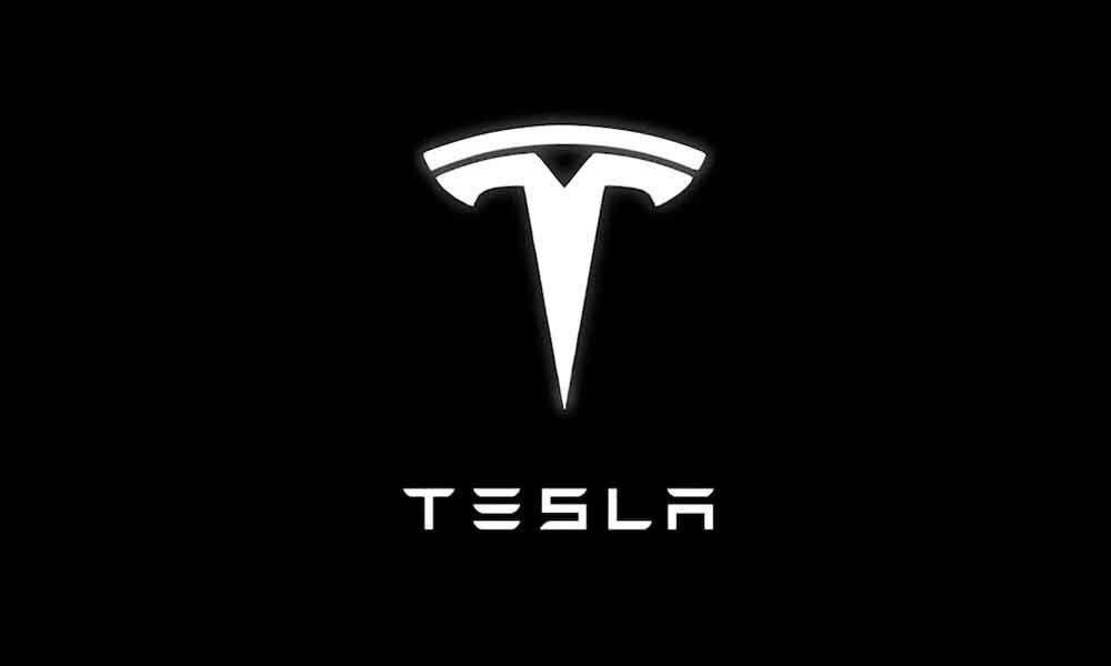 Tesla slams critic with restraining order