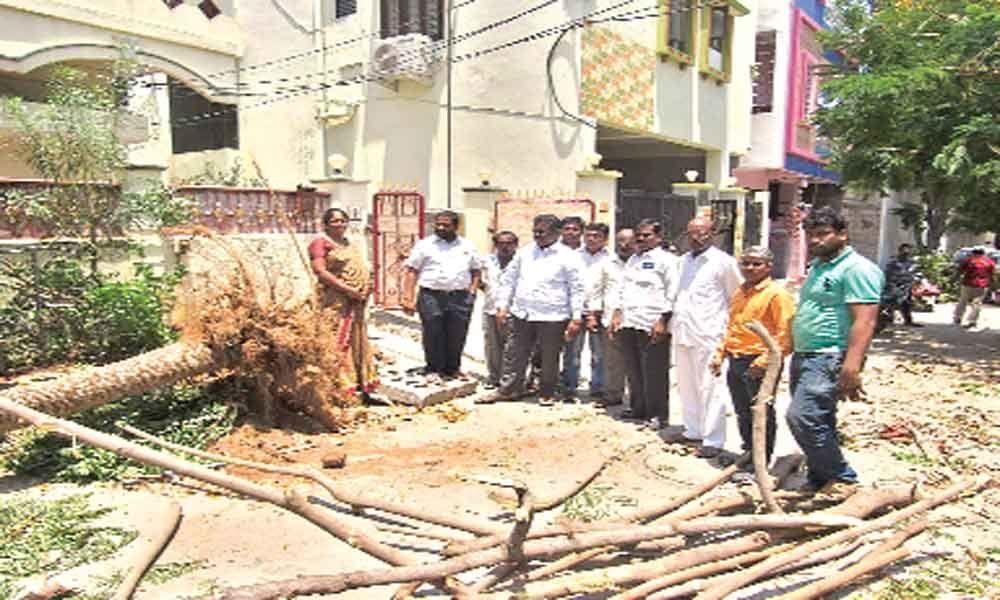 Restore normalcy, Pannala tells officials