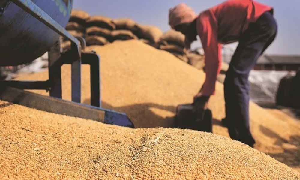 Government hikes customs duty on wheat to 40%