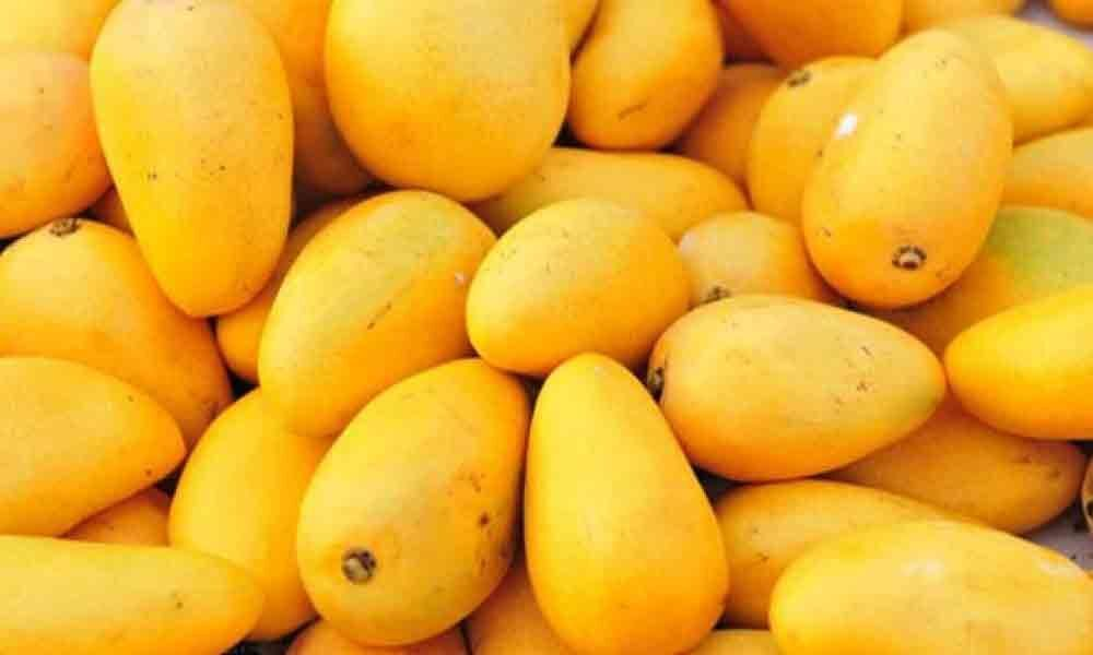 Carbide-ripened mangoes flood Nellore district