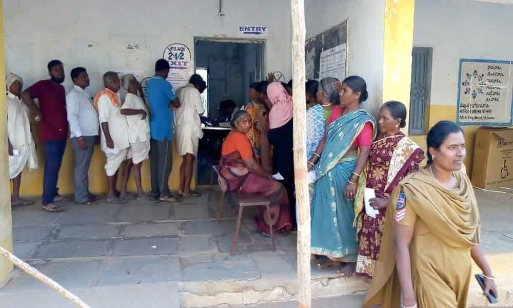 Local body polls conclude peacefully