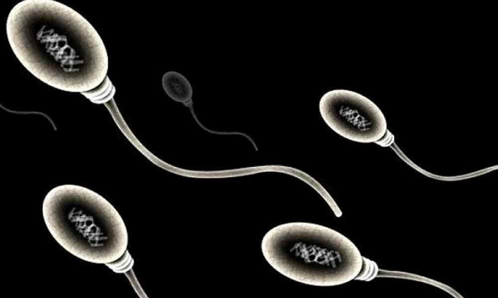 Fertility in danger! Men try having family before its too late
