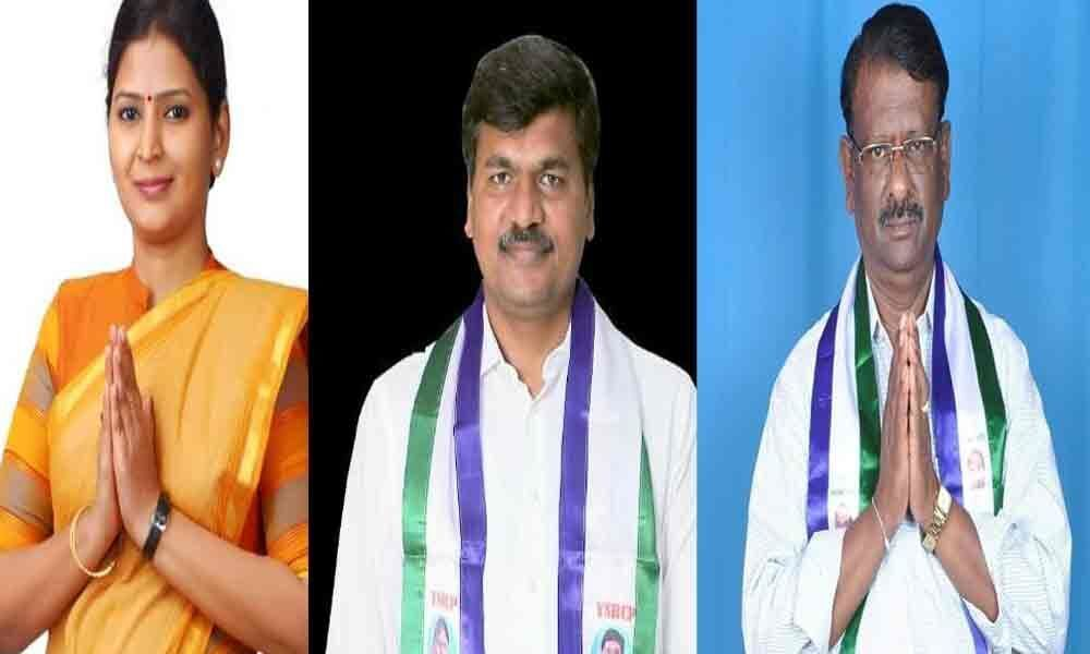 YSRCP clean sweep in Anantapur district