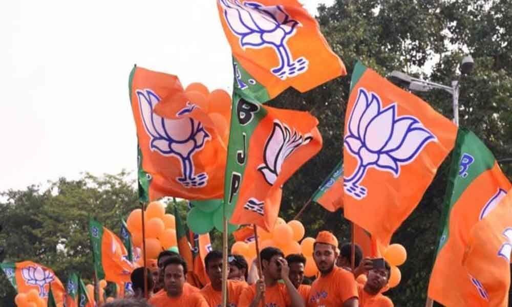 BJP wins Rewa, Bhind Lok Sabha seats; boosts MP rally to 28