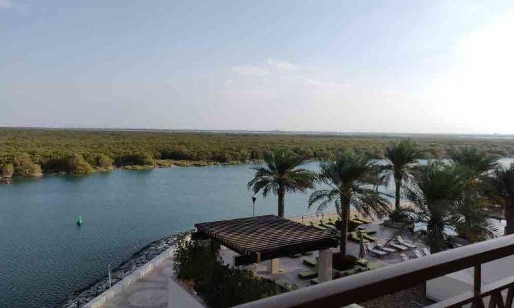 Amazing Abu Dhabi