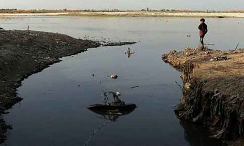 Gangas Faecal Coliform Level 3-12 Times Higher Than Limit: Green Court