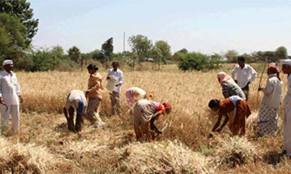 Hike farmer income support, says Ficci