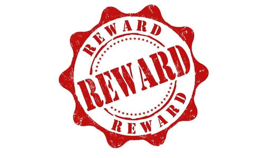Dont reward criminals