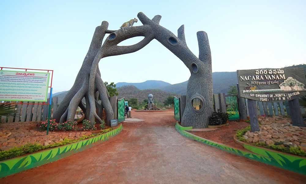 Mamillapalli turning as entertainment hub