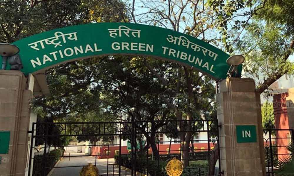 NGT asks Army to cooperate with Delhi Cantonment Board to implement solid  waste rules
