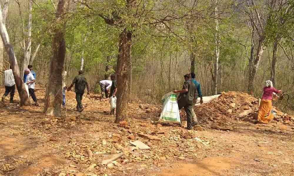 Plastic waste cleared from Nagara Vanam