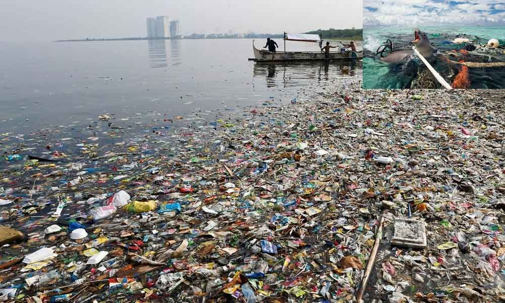 Our Oceans are dying - are corporations doing enough?