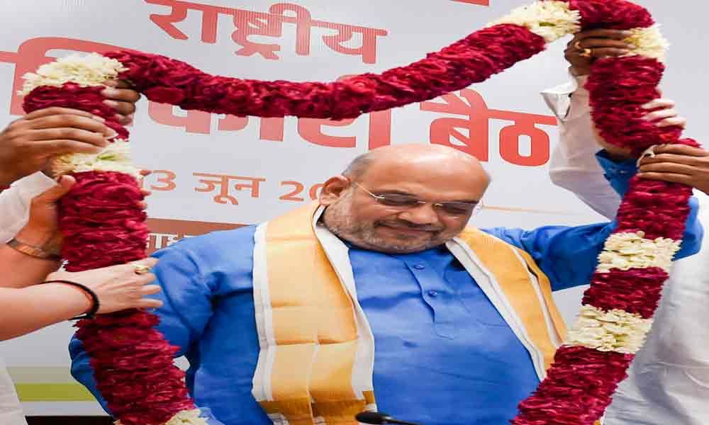 BJP yet to reach  its peak: Amit Shah