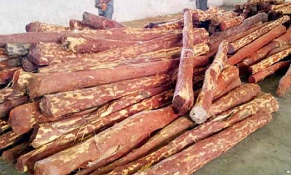 Coordinated efforts curbed red sanders smuggling: DFO