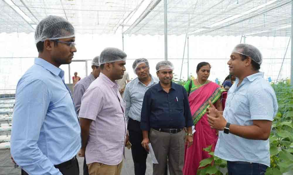 Exhort farmers to take up horticulture farming
