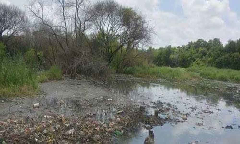 Pollution Control Board urged for revival of Trimulgherry Lake