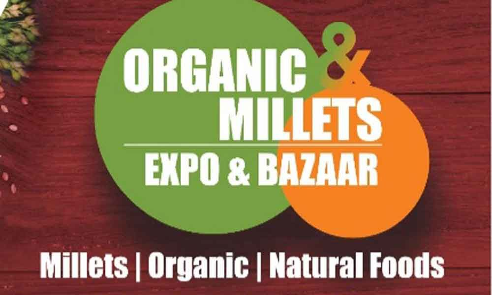 Organic and millets expo and bazaar at Shilparamam