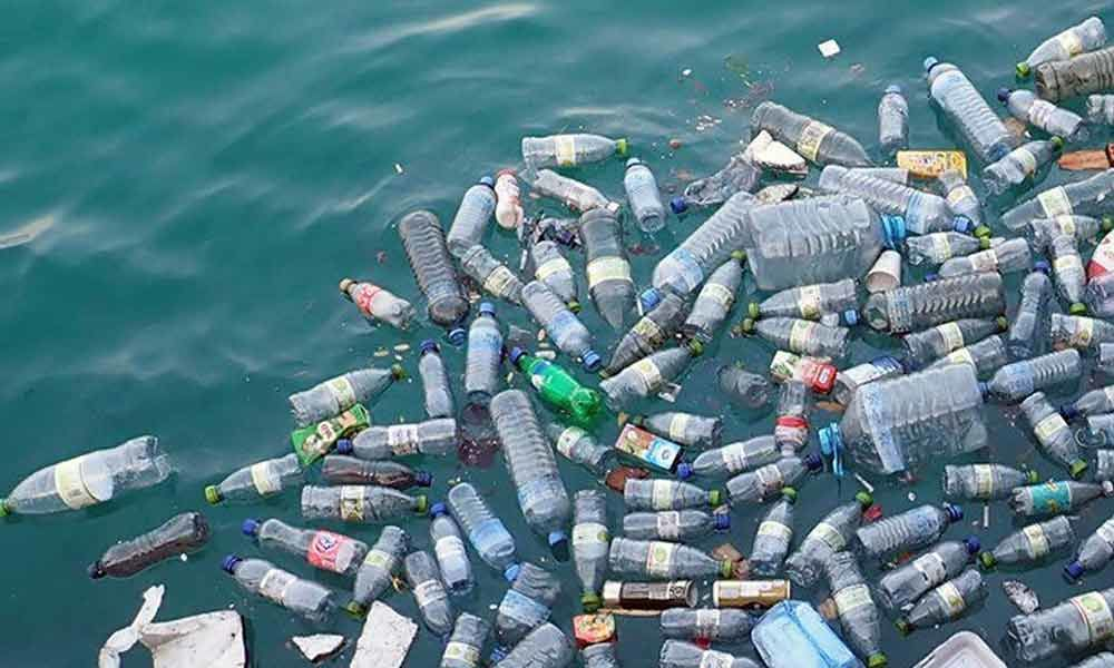 The indiscriminate growth of plastic waste