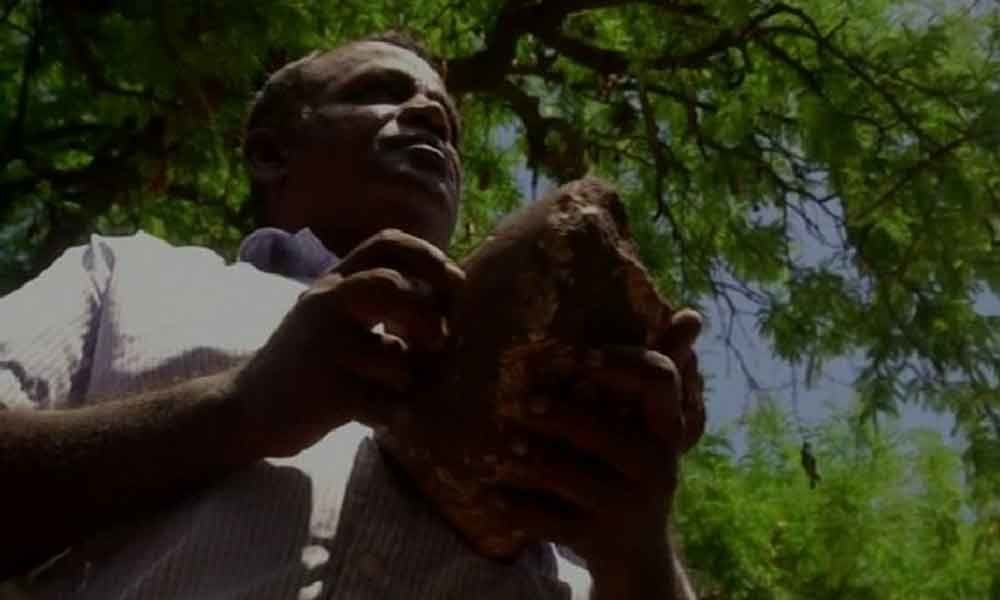 Man discovers 35-year old meteoroid stone in farm house in Coimbatore