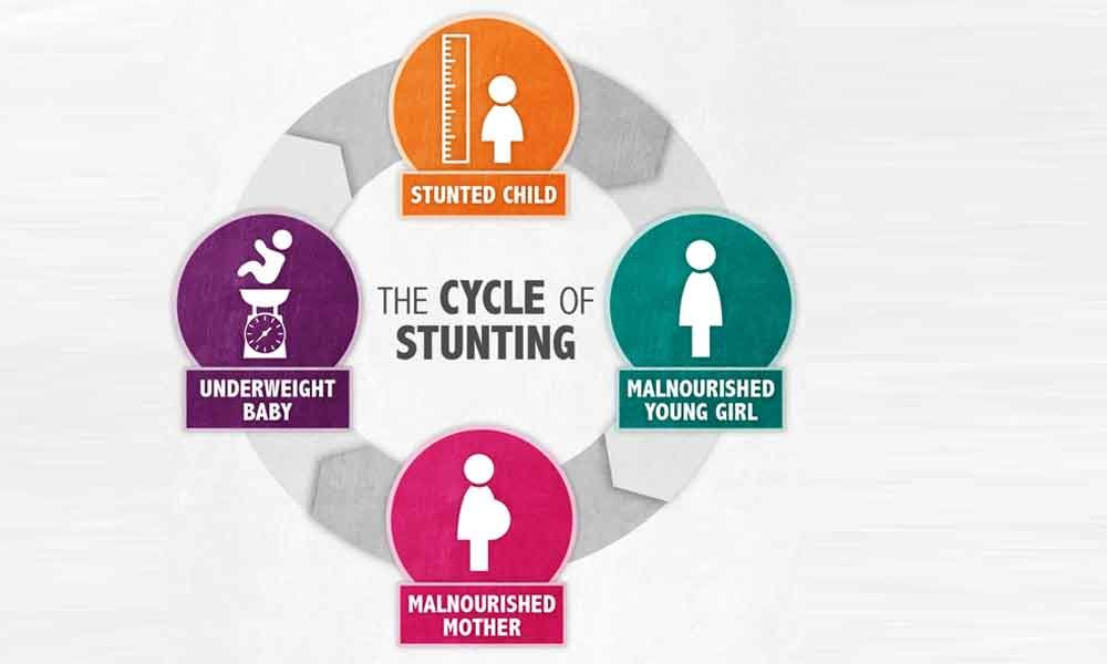 National Institute of Nutrition to conduct study to prevent stunting