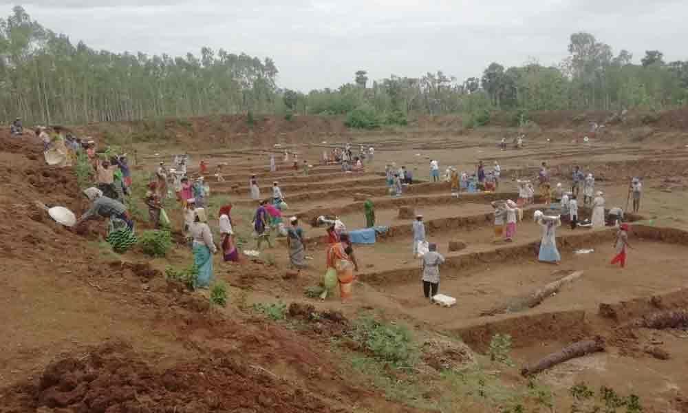 53,711 MGNREGS works proposed in Srikakulam