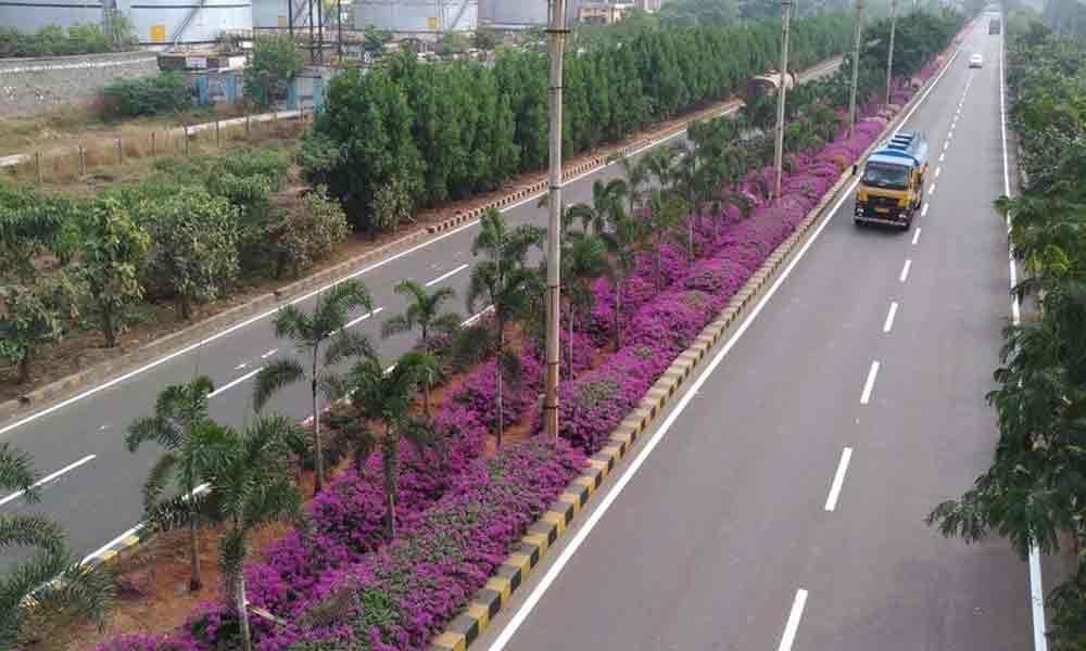 Visakhapatnam Port Trust bags Greentech Environment Award
