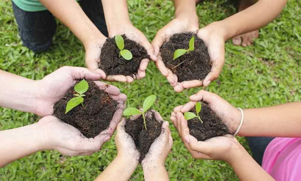 Gram Panchayats heads given the task of nurturing saplings